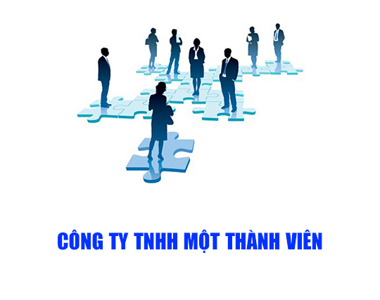 Cong ty TNHH mot thanh vien theo quy dinh phap luat
